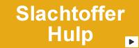 http://slachtoffershulp.nl/